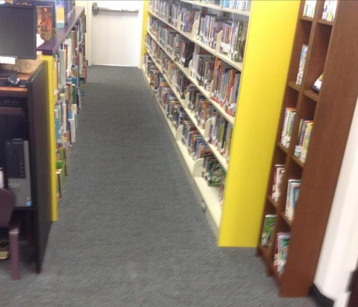 Carpets and Books are Harrp with Carpet Cleaning at Library in Camden South Carolina