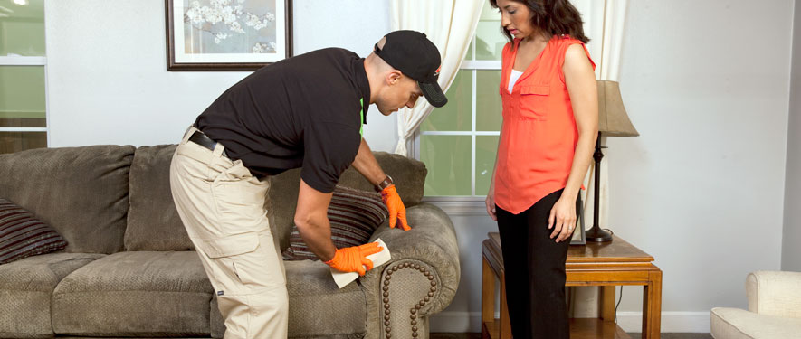Lancaster, SC carpet upholstery cleaning